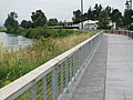 Biking along Skagit River in Mount Vernon (6111546524).jpg