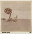 Bild från familjen von Hallwyls resa genom Egypten och Sudan, 5 november 1900 – 29 mars 1901 - Hallwylska museet - 91675.tif