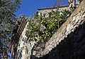 Biot (Alpes Maritimes) Zitronen.jpg