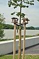 Bird feeder 02, Marbach an der Donau.jpg