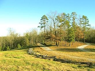 Battle of Blackstock's Farm - Blackstock Battle Memorial