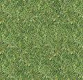 Blender3DNoobToPro-Grass.jpg