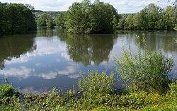 Blies river near Bliesbruck.jpg