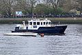 Boat Race 2014 (28).jpg