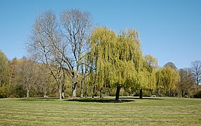 Bondues parc du vert bois rotonde.jpg