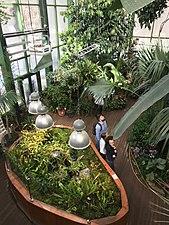 Botanical Garden, Moscow, Russia.jpg