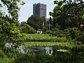 Botanischer Garten - Eichenteich (Botanic Garden - Oak Pond) - geo.hlipp.de - 26721.jpg