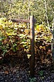 Bottrop - Halde Haniel - Kreuzweg00 04 ies.jpg