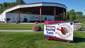 Amateur boxing hall of fame