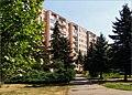 Branisková ulica - panoramio.jpg