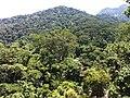 Brasil rural - panoramio (7).jpg