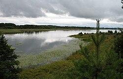 Braslav lakes NP path1 view2.jpg