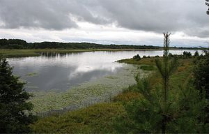 Braslav lakes NP path1 view2.jpg