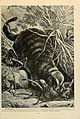 Brehm's Life of animals (Page 149) (6220679042).jpg