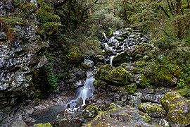 Bridal Veil Creek, Arthur's Pass National Park, New Zealand.jpg