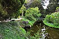Bridge, Swiss Garden, Old Warden Geograph-1892544-by-Mick-Lobb.jpg