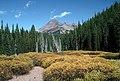 Broken Top, Deschutes National Forest-2 (36796830610).jpg