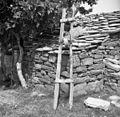Brus (leseno ogrodje z voslo) brusnica- Marezige- Bržani 1950.jpg
