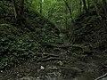 Bubovice-Srbsko - panoramio (96).jpg