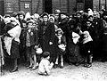 Bundesarchiv Bild 183-N0827-318, KZ Auschwitz, Ankunft ungarischer Juden.jpg