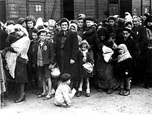 Black and white photograph of  Hungarian Jews arriving at the Auschwitz concentration camp in Summer 1944