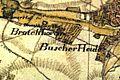 Buscherheide Tranchot.jpg