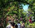 Butchart Gardens - Victoria, British Columbia, Canada (28638141584).jpg