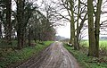 Byway near Steppingley Copse - geograph.org.uk - 345290.jpg