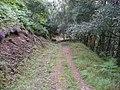 Càm Bhealach path - geograph.org.uk - 222250.jpg