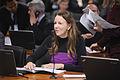 CAE - Comissão de Assuntos Ecômicos (17193395980).jpg