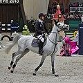 CHI Genève 2013 - 20131213 - Steve Guerdat et Nasa.jpg