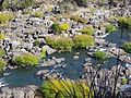CSIRO ScienceImage 11388 Tamar River Launceston Tasmania.jpg