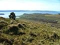 Cairn on Ben Gorm - geograph.org.uk - 417481.jpg