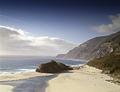 California coastline LCCN2011630930.tif