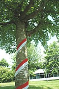 Canada Day at U-house 2012 (7468000474).jpg