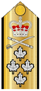 Canadian Admiral Shoulder Board.png