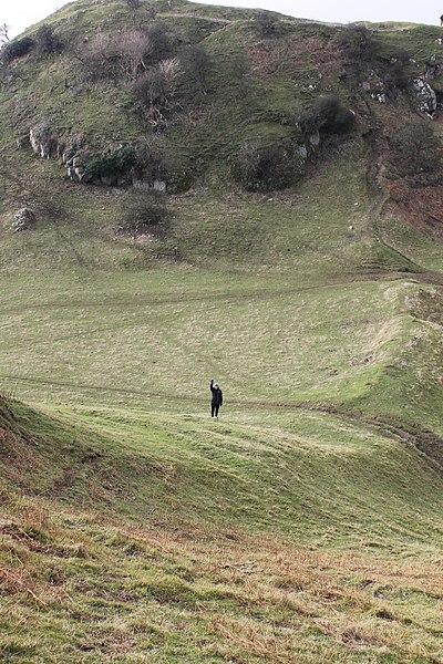 File:Castell Degannwy Deganwy Castle Sir Ddinbych Wales 41.JPG
