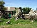 Castell ruins - geograph.org.uk - 847902.jpg