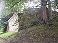 Castle Walls - geograph.org.uk - 222833.jpg