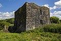 Castles of Munster, Ballybeg, Cork - geograph.org.uk - 1392866.jpg