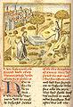 Caxton Ovid, 1480.jpg