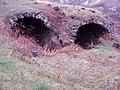 Cellules monastiques - panoramio.jpg