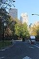 Central Park South - panoramio (5).jpg