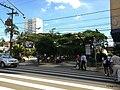 Centro, Franca - São Paulo, Brasil - panoramio (233).jpg
