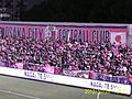Cerezo Supporter.JPG