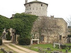 Château du Parc - Muraille et donjon