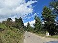 Chelela to Paro road views during LGFC - Bhutan 2019 (114).jpg