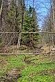 Cherevakha Manevytskyi Volynska-Urochyshche Dzherela nature reserve-view near Cherevakha river-1.jpg