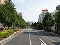 Chiba-r195.JPG