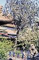 China1982-340.jpg